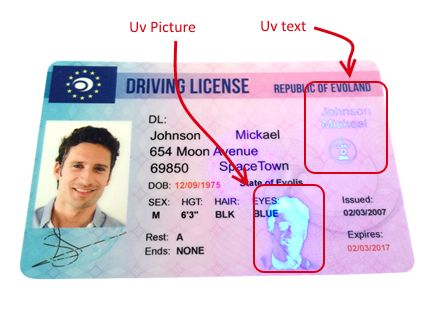 Pin On Usa And Canadian Driver S License