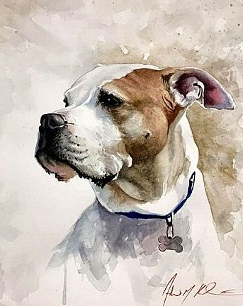 Andrew M Kish Iii Usa Watercolor Dog Watercolor Pet Portraits