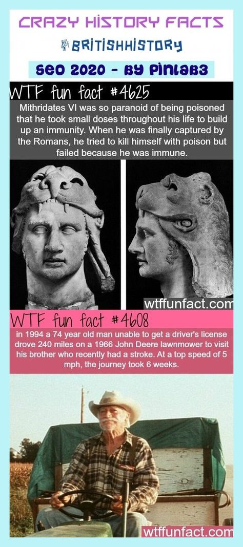 #crazy #history #facts crazy history facts #britishhistory #history. cool history facts, history facts funny, american history facts, random history facts, black history facts, indian history facts, world history facts, unknown history facts, egyptian history facts, secret history facts, english history facts, european history facts, viking history facts, irish history facts, royal history facts, history facts australia, old history fa