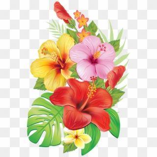 Hawaiian Flowers Hibiscus Flowers Tropical Flowers Tropical Flower Draw Hd Png Download In 2020 Flower Drawing Hibiscus Flower Drawing Flower Illustration