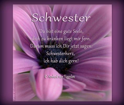 Gedichte Spruche Geschwisterliebe Schwester Zitate