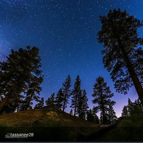 BIG BEAR CALIFORNIA. Skies so clear, they are perfect for star gazing. Starlight  by: @tassanee28. #LiveItUpBigBear.