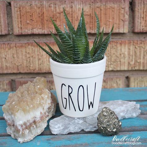 Rae Dunn Inspired Terracotta Succulent Planter DIY