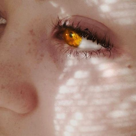 Find images and videos about edit, glow and yellow eyes on We Heart It - the app to get lost in what you love. Pretty Eyes, Cool Eyes, Beautiful Eyes, Elias Und Laia, Amber Eyes, Aesthetic Eyes, Golden Eyes, Yellow Eyes, Eye Art