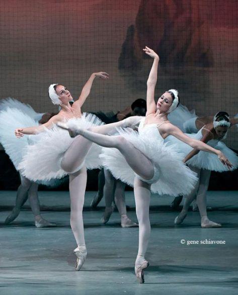 Historia Del Ballet El Lago De Los Cisnes Con Imagenes Lago De