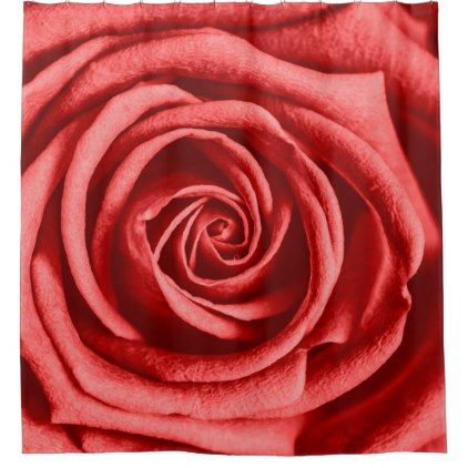 Red Rose Shower Curtain Zazzle Com Rose Shower Curtain Red
