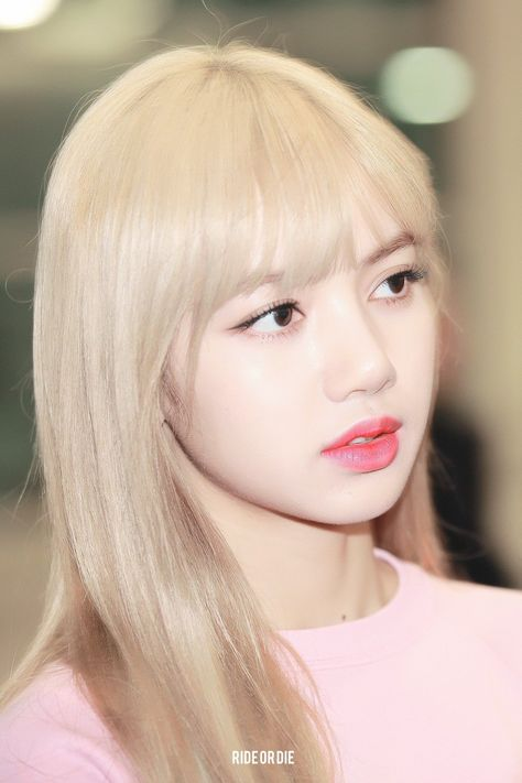 [Fansite] BLACKPINK Lisa Airport Photo from Hong Kong Back to Korea