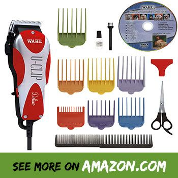Review The Best Traveling Dog Groomer 2020 Consumer Reports Dog Grooming Pet Grooming Dog Clippers