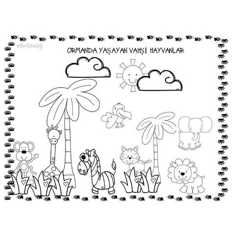 455 En Iyi Hayvanlar Boyama Goruntusu Hayvanlar Boyama