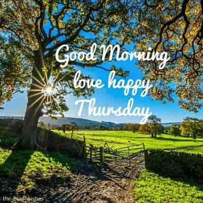 111 Good Morning Thursday Greetings Images And Wishes Good Morning Happy Thursday Thursday Greetings Good Morning Thursday