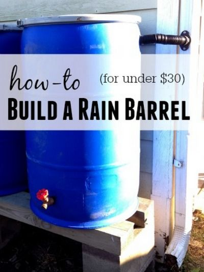 How To Build A Rain Barrel For Under $30   You can build a rain barrel and store water from rain fall that will benefit your home, garden, and community.