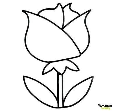 Flores Para Dibujar Pesquisa Google Com Imagens Ideias Para