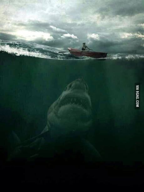 This is why the ocean scares me..
