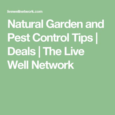7062 best Pest Control Tips images on Pinterest Pest control - pest analysis