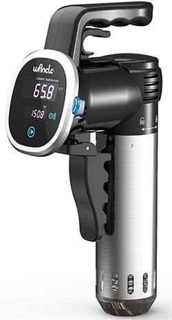 Top 10 Best Sous Vide Cookers In 2020 Reviews Sous Vide Best