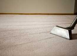 Carpet Cleaning Frankston Professional Carpet Cleaning How To Clean Carpet Stain Remover Carpet