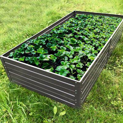 Estetyczna I Funkcjonalna Podwyzszona Grzadka Ten Sposob Uprawy Warzyw Odmieni Twoj Ogrod In 2021 Garden Plants