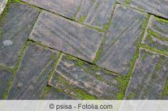 Terrassenplatten Reinigen Moos Und Algen Von Terrasse Entfernen Mit Bildern Terrassenplatten Reinigen