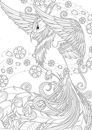 Floral Phoenix Digital Art Prints Colouring Pages Coloring Books