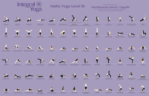 level yoga  yoga buddy