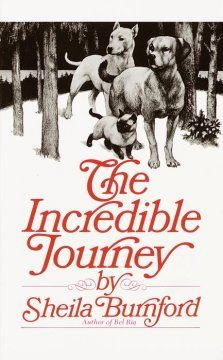 A doughty young Labrador retriever, a roguish bull terrier, and an indomitable Siamese cat set out through the Canadian wilderness to make their way home to the family they love.