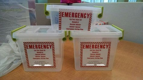 Emergency allergy bins epipen, Benadryl, emergency action plan - emergency action plan