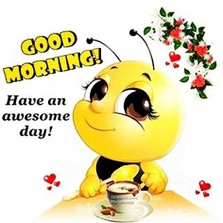GoodMorning #Awesome #Bees #Buzz #Yellow #Black #Tea #Flowers #Smile #DaCostaHoney #Pro… | Cute good morning quotes, Good morning wishes friends, Cute good morning
