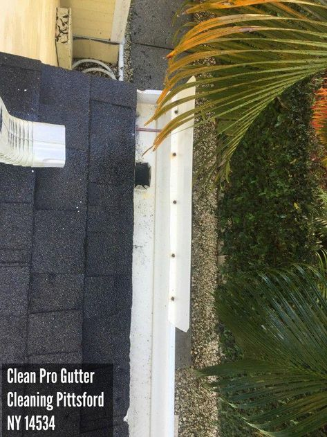 Read Our Domain For A Good Deal More Information On This Beautiful Ground Gutters Groundgutters In 2020 Cleaning Gutters Gutters Gutter Screens