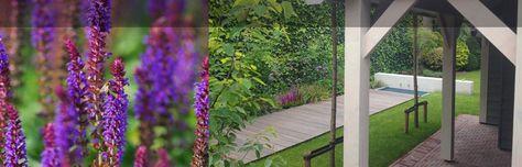 Moderne tuin Kaatsheuvel - luxe - tuinen - hardhouten - vlonder - meter - tegels - berken - bomen - sier - grassen - hovenier - tuinarchitect - salvia - exclusief - tuinhuis - Erik - Knops - tuinontwerp