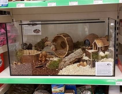 Pets At Home Hamster Cages Reptiles In 2020 Hamster Cages Hamster Habitat Dwarf Hamster Cages