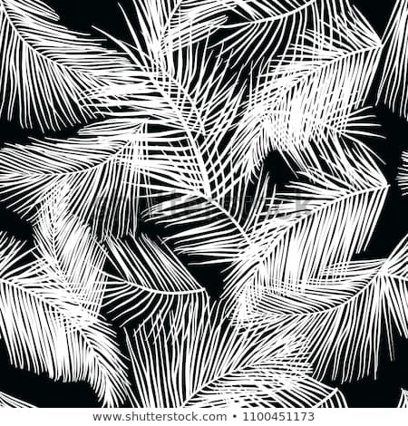 Tropical Palm Leaves Seamless Pattern Vector Illustration Nature