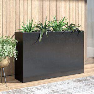 Mercury Row Shehan Fiberglass Planter Box Wayfair Planter