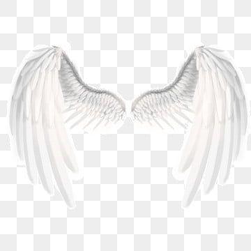 Rede Dados Globo Branco Terra Forma Branco Dados Terra Imagem Png E Psd Para Download Gratuito Angel Wings Png Wings Png Cartoon Angel Wings