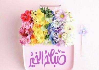 صور ورد صباح الخير عالم الصور Beautiful Morning Messages Beautiful Flowers Wallpapers Good Morning Cards