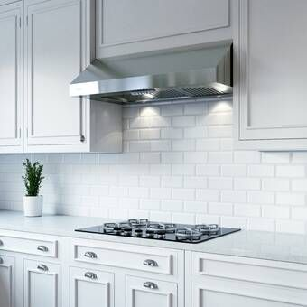 30 Professional 600 Cfm Under Cabinet Range Hood In 2020 Kitchen Cabinet Design White Shaker Kitchen Kitchen Remodel