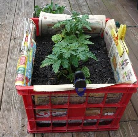 Gardening without a yard. I have several crates! really excited to use them for extra planting space!