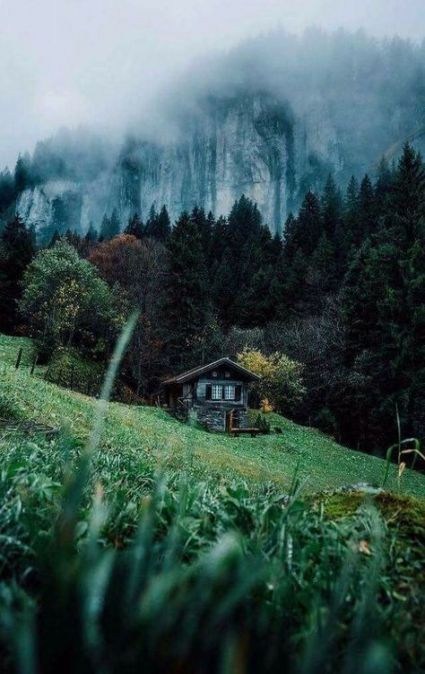 63 Best Ideas For Photography Nature Forest Earth Nature Forest House Beautiful Places