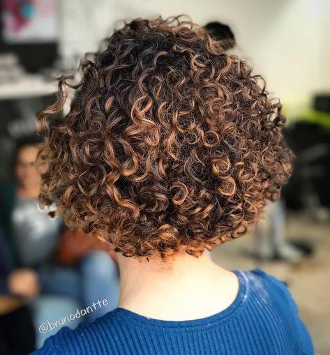 Dark Brown Curly Bob with Caramel Highlights