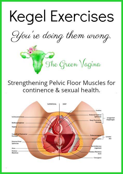 Rejuvenatipelvic floor exercise vaginal health
