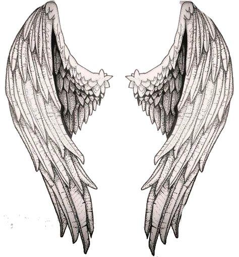 как эскиз крылья ангела картинки один