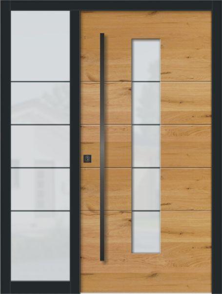 Moderne Turen Exclusiv Eingangsbereichhausinnen Hausturen Ho