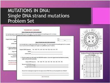 Mutations In Dna Single Strand Dna Mutations Problem Set Problem Set Mutation Easy Lessons