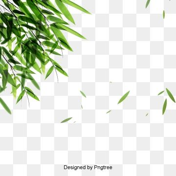 Green Bamboo Leaves Falling Material Bamboo Bamboo Leaves Leaf Png Transparent Image And Clipart For Free Download Leaf Images Watercolor Leaves Leaf Background