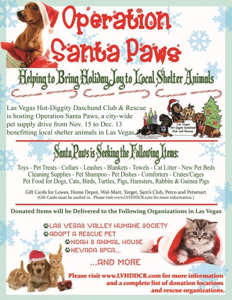 Camp Bow Wow Google Search Santa Paws Animal Shelter Bow Wow