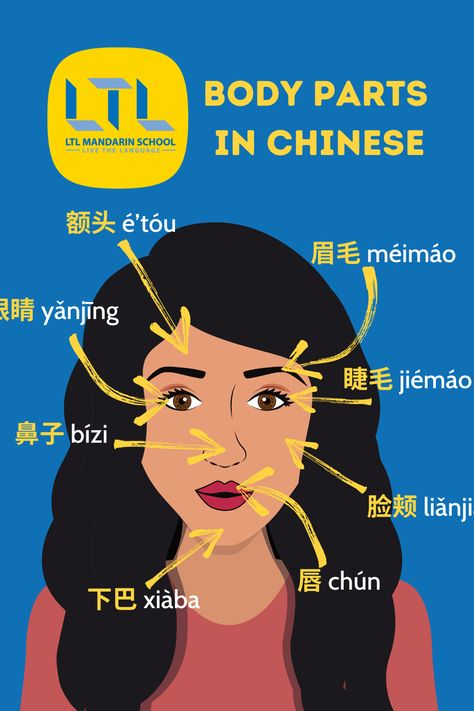 Head & Face in Chinese
