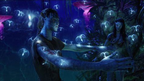 The Best Cinematography – The Many Looks Of Avatar   Student Resources