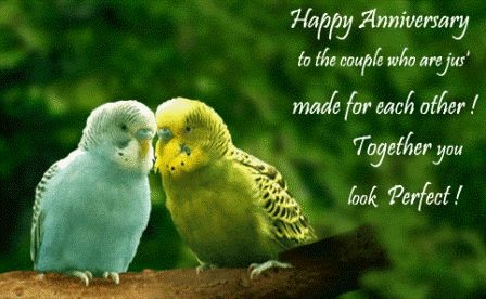 To One Cool Anniversary Wedding Hy Quotes Sayings Pinterest And