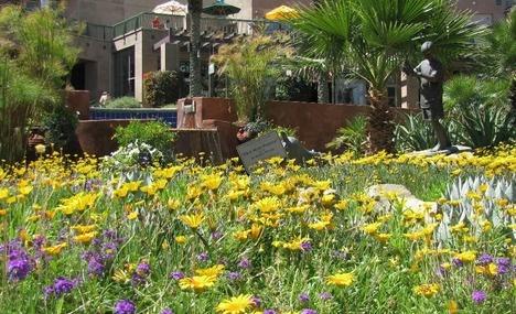 Rose Gardens at Empire Polo Club, Indio, CA | Shops, Restaurants ...