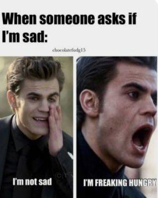 Vampire Diaries Memes, Vampire Diaries Damon, Vampire Daries, Vampire Diaries Wallpaper, Vampire Diaries The Originals, Vampire Quotes, Vampire Books, Really Funny Memes, Funny Relatable Memes
