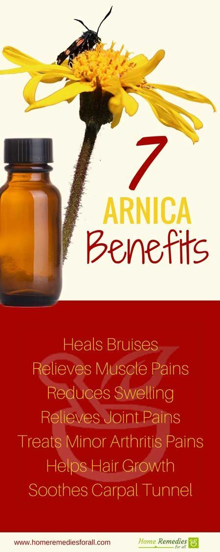 25++ Arnica oil for pain relief inspirations